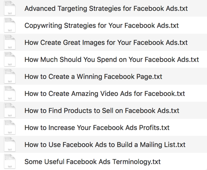 Facebook Ads Authority - Done-For-You PLR Package by Aurelius Tjin