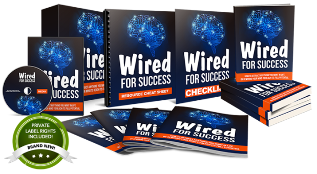 Wired For Success - Done-For-You PLR Package by Aurelius Tjin