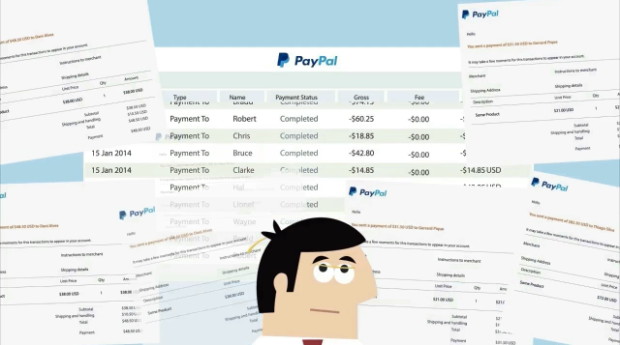 Paydrill - Ultimate Paypal Software by Ankur Shukla