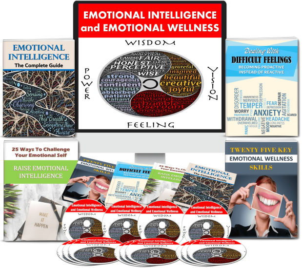[New Quality] Emotional Intelligence and Emotional Wellness - 270+ Piece PLR Pack by JR Lang Review – The Brand-New Content Package of Various Health Contents Concerning Emotional Intelligence that You Can Use, Edit, Rebrand, and Sold as Your Own Products to Get Quick and Easy Profits